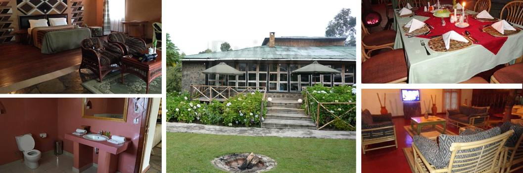 mountain-gorillas-view-lodge