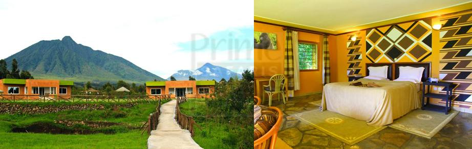 mountain-gorilla-view-lodge