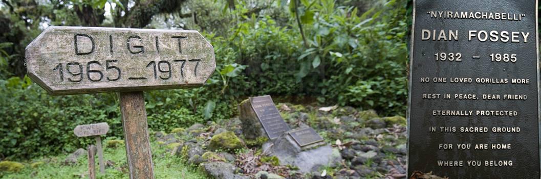 dian-fossey-tomb-rwanda