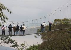nyungwe-canopy-walk