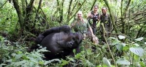 5 Days Gorilla trekking safari Rwanda Gorilla safari Uganda